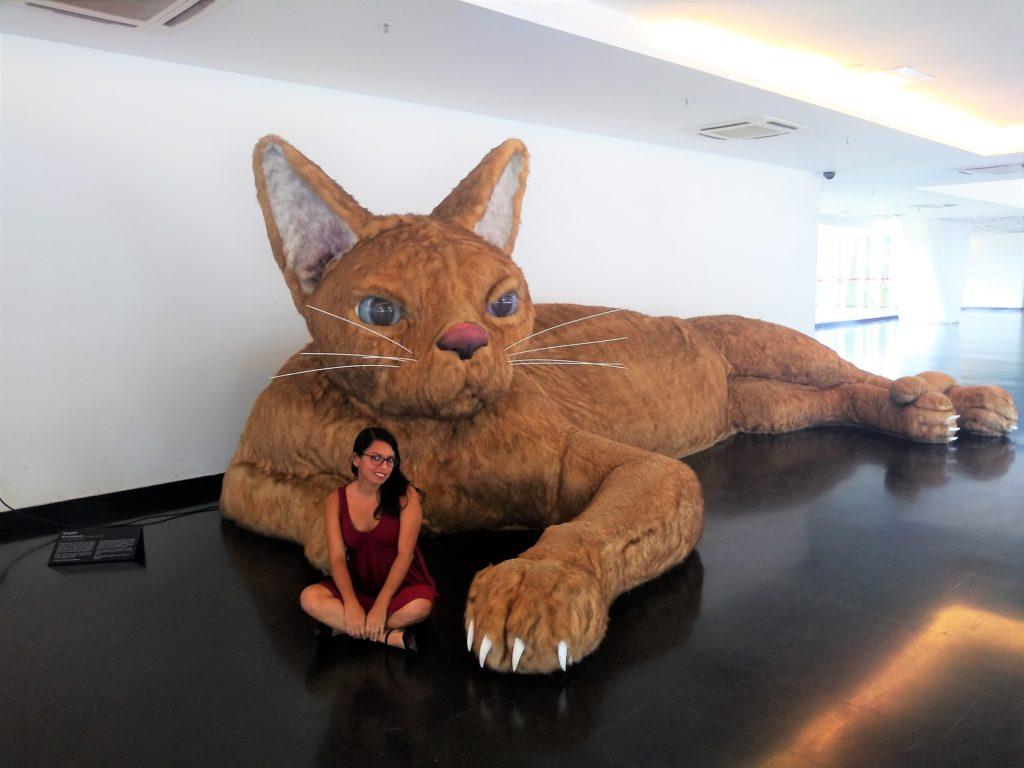El gato de ronronea - Nina Pandolfo  en el museo de arte contemporáno de sao paulo